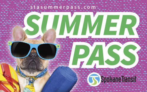 STA_SummerPass Website_Beach_Dog