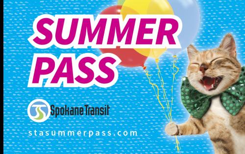 STA_SummerPass Website_Cat_Balloons