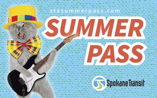 STA_SummerPass Website_Cat_Guitar