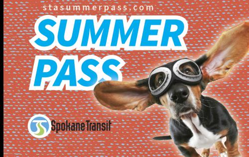 STA_SummerPass Website_Flying Dog