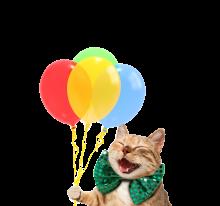 shutterstock_687008515 balloon